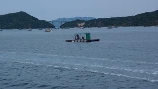 鳴門ウチノ海総合公園にて3